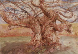 Study for Oberon Tree 2010
