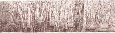 The Kommo Toera forest walk 1